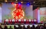 25 марта на ВДНХ пройдет фестиваль, посвященный празднику «Навруз — 2018»